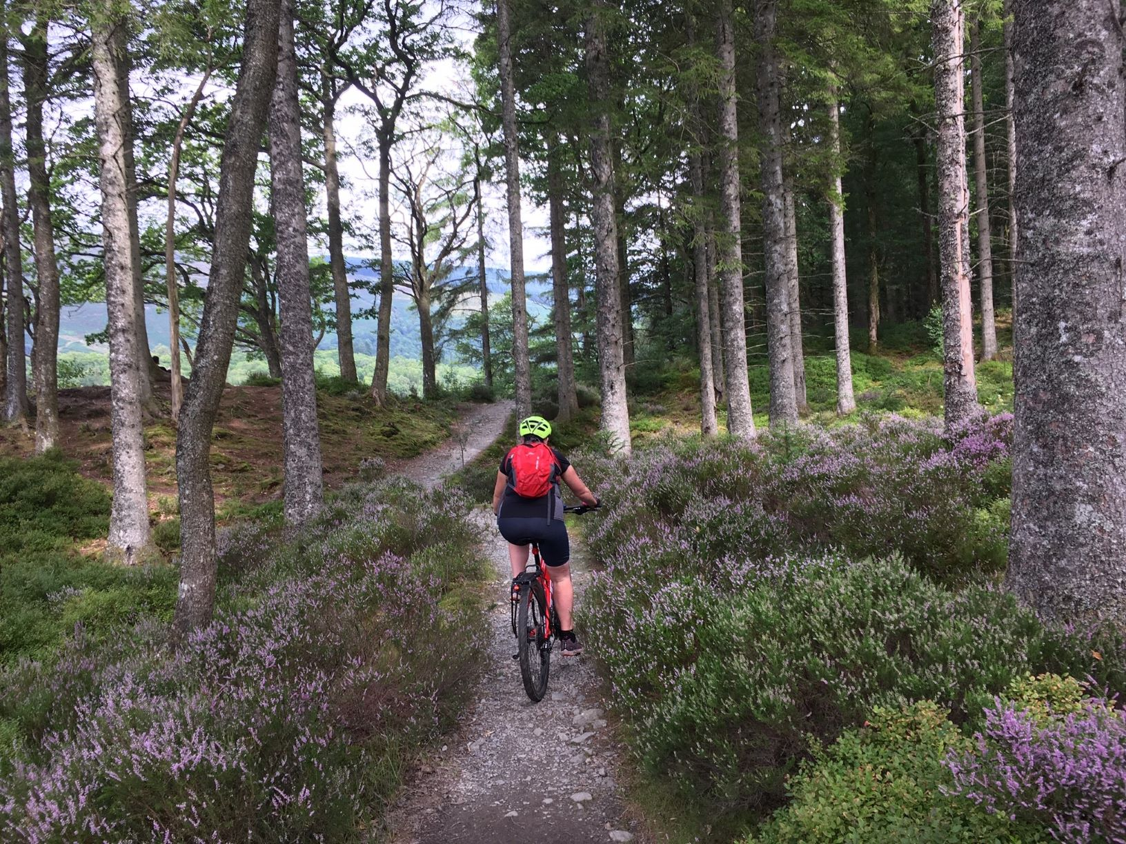 explore the trossachs by electric bike